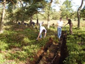 Op 25 september 2010 werden we geholpen door een groep studenten die een reünie hielden en ook zij kwamen een handje helpen